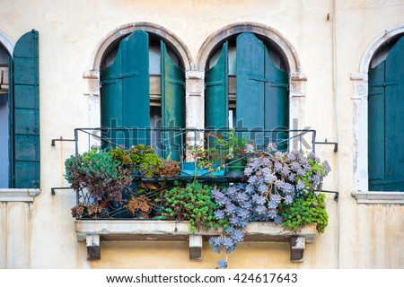 Flowers in a box on the window. Venice, Italy