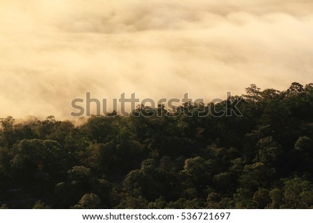 Fog and cloud mountain sunrise at Pha Chanadai Cliff, Phataem National Park,Ubon Ratchathani Province, Thailand