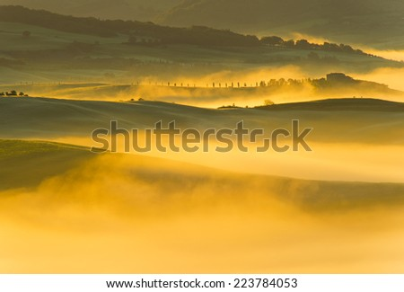 foggy covering meadow sunrise Tuscany landscape near Pienza, Val d'Orcia Italy