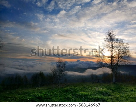 Foggy hilltop sunrise