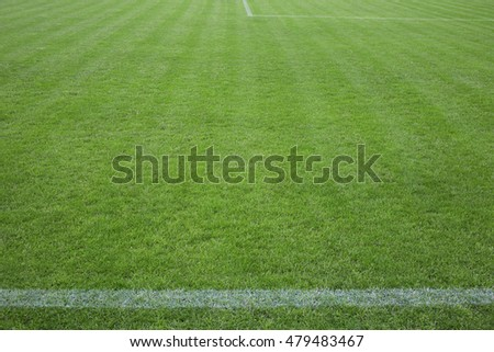 Football field with green grass and horizontal white line