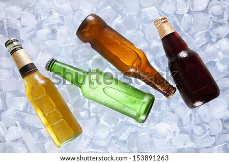 Four different bottles of beer cooling on ice.
