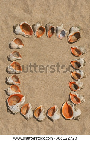 Frame maked of sea shells on sand.