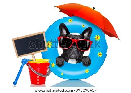 french bulldog dog relaxing on air mattress, with sunglasses   isolated on white background on summer vacation holidays