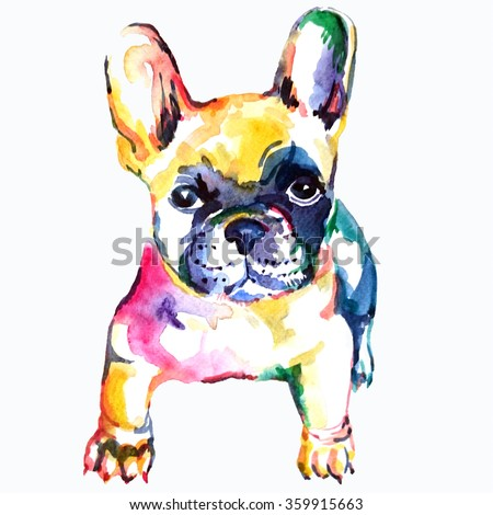 French bulldog. Original watercolor illustration of a dog.