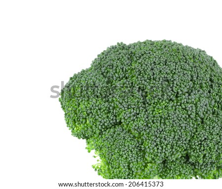 Fresh broccoli. Isolated on a white background.