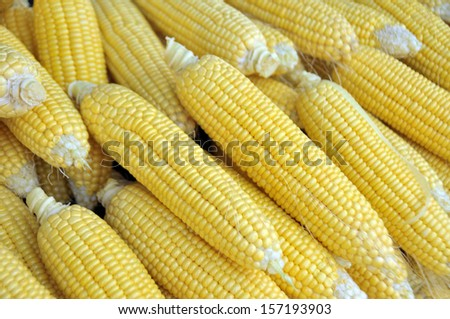 Fresh corns, shallow DOF