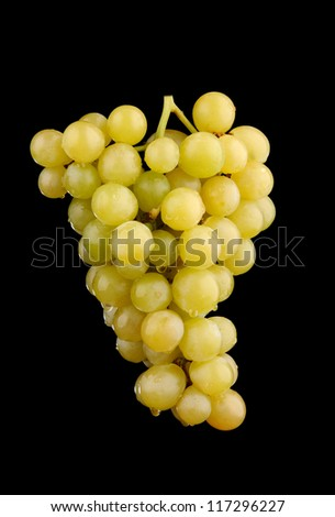 Fresh green grapes isolated on black