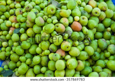 Fresh green Monkey Apple