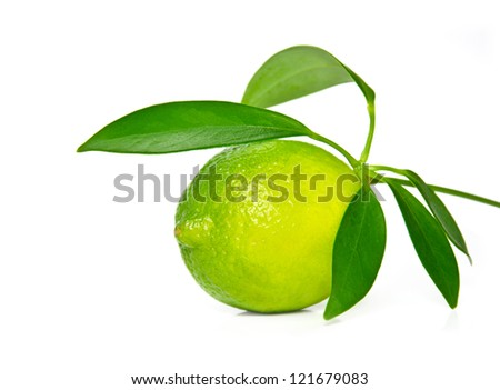 Fresh lime on white background.