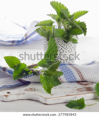 Fresh mint leaves on  white wooden board