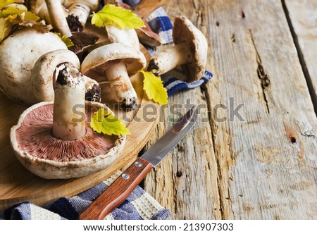fresh mushrooms on a cutting board on a wooden background. copy space background