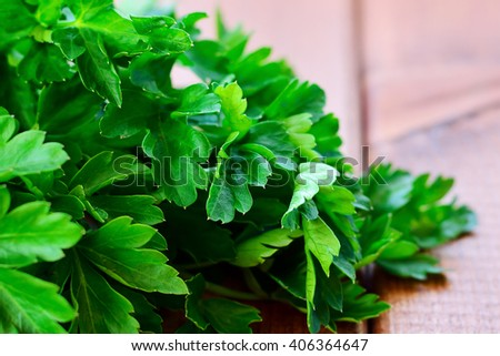 Fresh parsley close-up on a wooden table