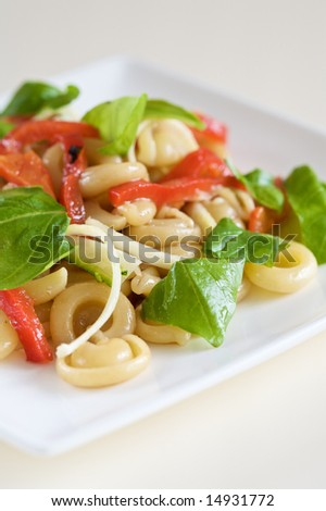Fresh pasta salad with roasted peppers, basil and zucchini