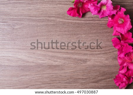 Fresh pink flowers on a wooden table. Floral purple background with space for text. Summer frame. Composition florist. A lot of empty space.