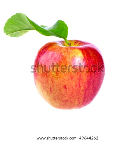 Fresh red apple with leaf isolated on white background