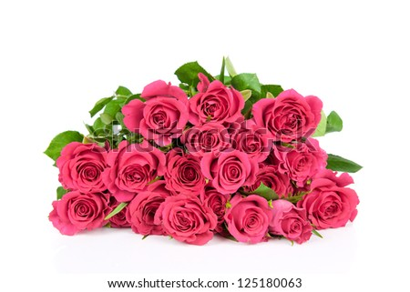 Fresh roses on white background