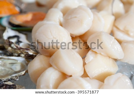 fresh scallops how to cook