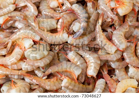 FRESH SHRIMP READY TO BE SOLD