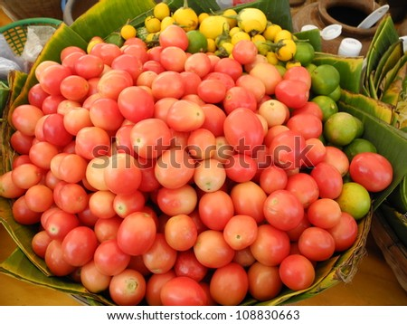 Fresh tomatoes and eggplants in a basket