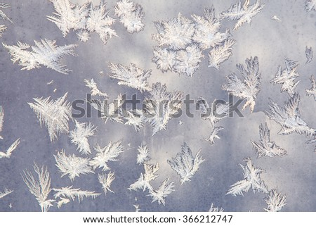 Frosty pattern on the window as small feathers