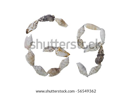 G letter from real seashells  isolated on white background