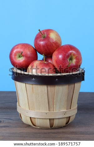 gala apple in bucket