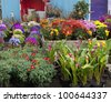 Garden center with many flowers on display for sale in early springtime - stock photo