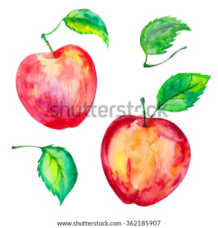 Garden red juicy apples hand drawn watercolor set with leaves, sticks. Colorful. Isolated on white background