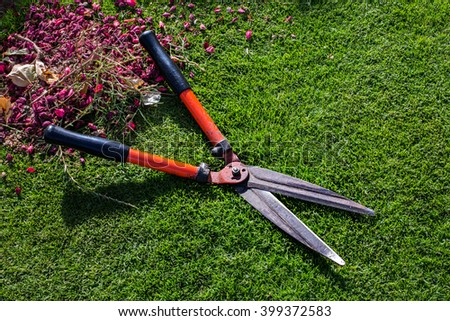 Garden scissors on grass