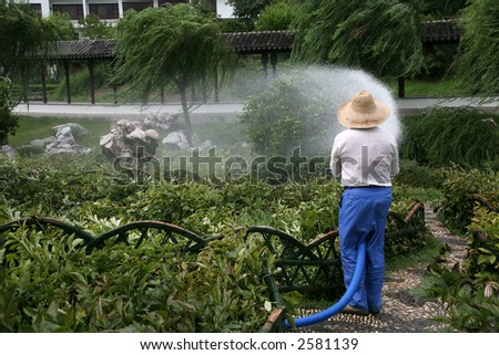 garden watering in summer