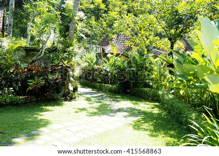 Garden with many kind of green plant