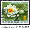 GERMANY - CIRCA 1957: a stamp printed in the Germany shows Water Lily, Aquatic Plant, circa 1957 - stock photo