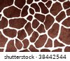 Giraffe print for background - stock photo