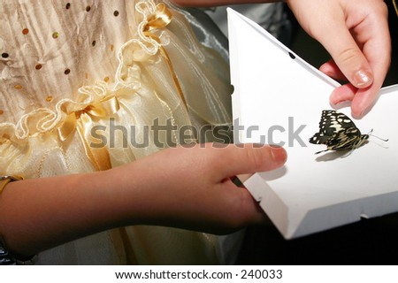 girl's hands opening a box with a butterfly inside