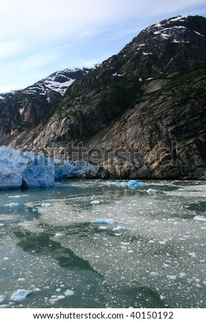 Glacier Bay Fjord - the icy waters of Alaska, USA