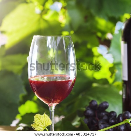 Glass and bottle of vintage red wine on a table. Outdoor shot.