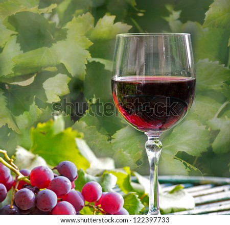 glass of wine with grapes and leaves on a wooden table