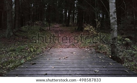 Gloomy autumn landscape of wooden bridge and footpath with fallen leaves in old Scandinavian nature reserve forest at dusk
