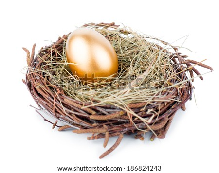Gold egg in nest from hay isolated on white