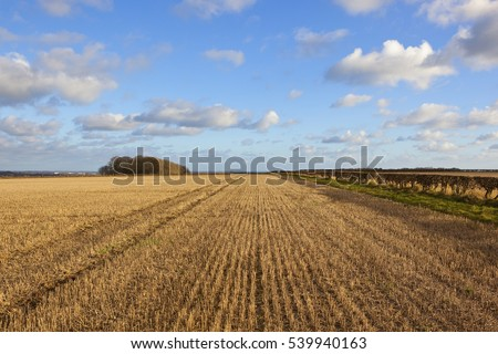 golden straw stubble fields with a view of the vale of york with hills hedgerows and wind turbines in a yorkshire wolds landscape under a blue cloudy sky in autumn