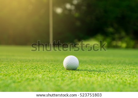 golf ball on green golf course, sunrise morning light.