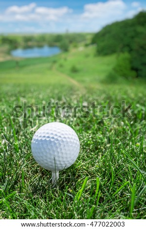 Golf ball ready to be hit on the green grass.