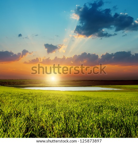 good sunset over green field with pond