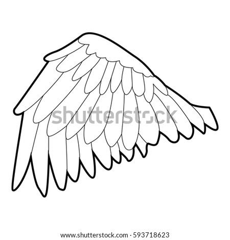 detailed sketch birds dove wing part stock illustration