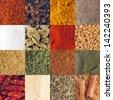 gorgeous collection of 16 spices (piri piri, cloves, curry, pepper, salt, cardamom pods, paprika, fenugreek, coriander, parsley, garam masala, bay leaves, chili, garlic, oregano, cinnamon sticks) - stock photo