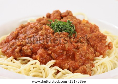 gourmet carefully made  pasta with meat sauce