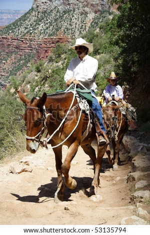 GRAND CANYON, AZ - JULY 27: A mule guide takes visitors on a tour up the popular Bright Angel Trail July 27, 2008 in Grand Canyon, AZ.