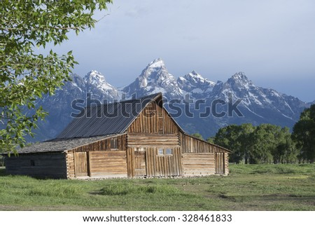 Grand Tetons famous barn with snow capped mountains in spring.