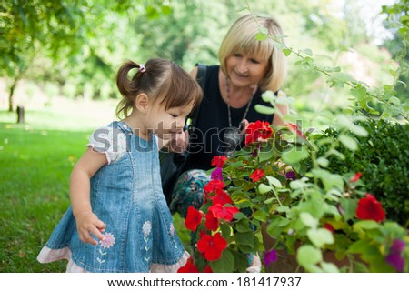 Grandmother and her granddaughter are looking flowers in the park